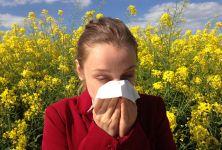 První jarní alergie a jejich křížení
